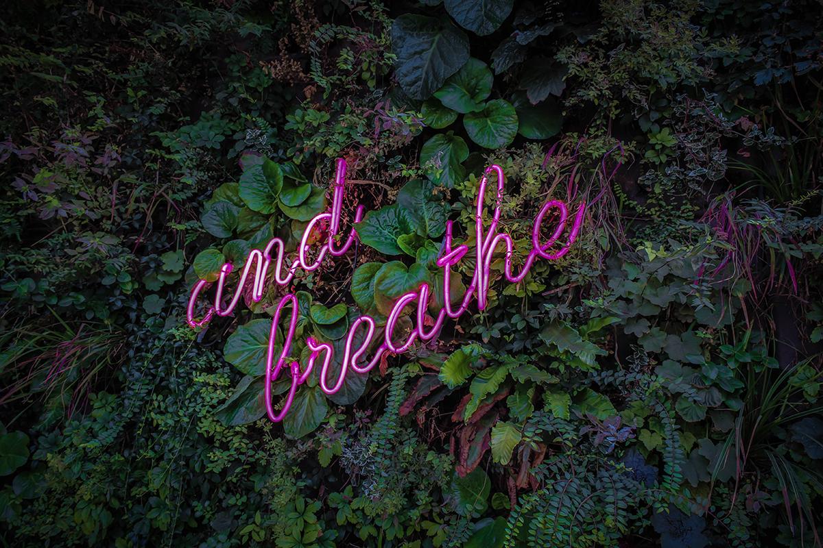 oddychaj neon kreatologia